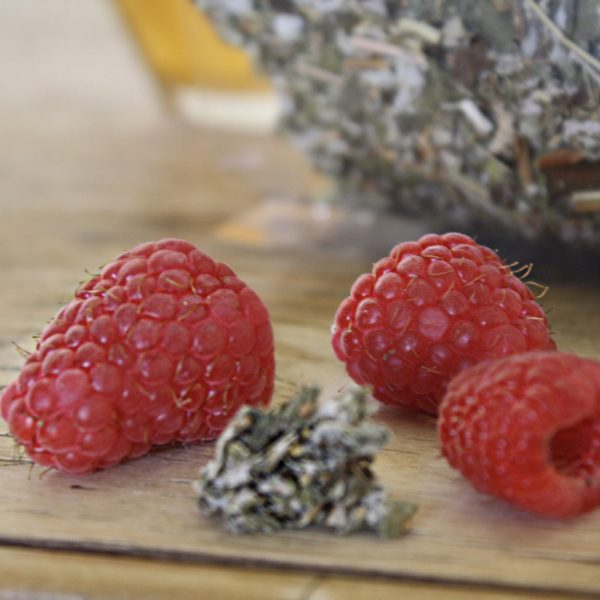 Gaia Natural Health Herbal Apothecary Raspberry Leaves